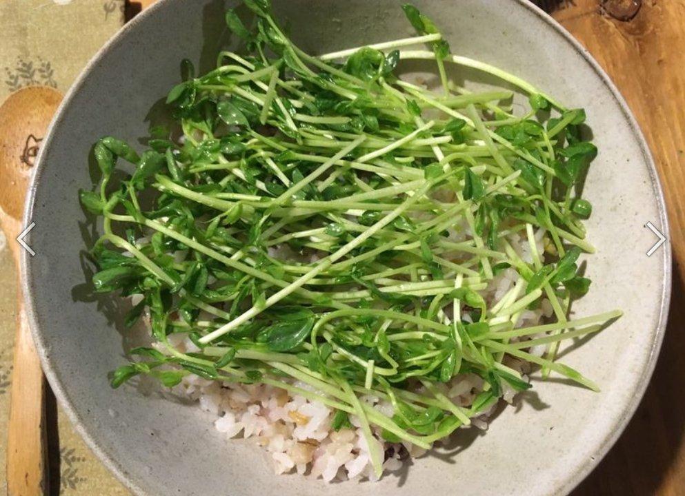 料理小白-豚肉味增燒丼